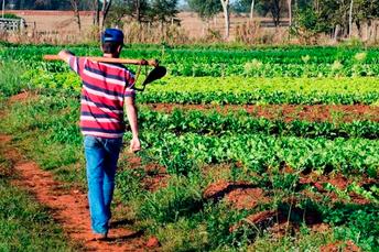 Confederação repudia veto a auxílio para trabalhador rural