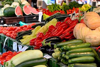 Orgânicos contribuem para inovação da produção agropecuária nacional