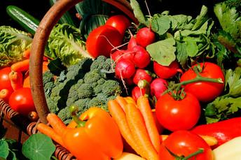 Comissão aprova proposta que prioriza agricultura familiar na compra de alimentos pelo SUS