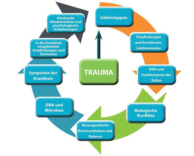 Trauma_Richtung_Biomagnetische Therapie