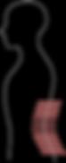 Backache Icon.png