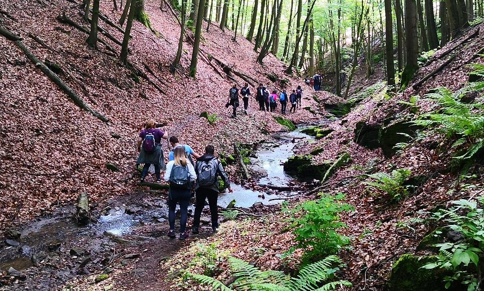 Planinarenje uz 4 elementa prirode