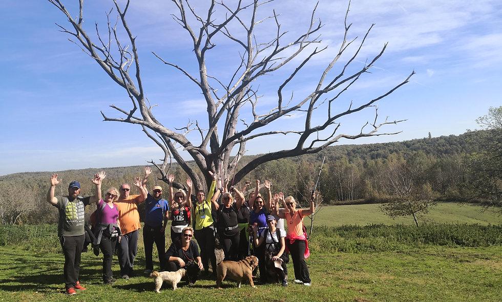 Planinarenje za laike na Bilogori