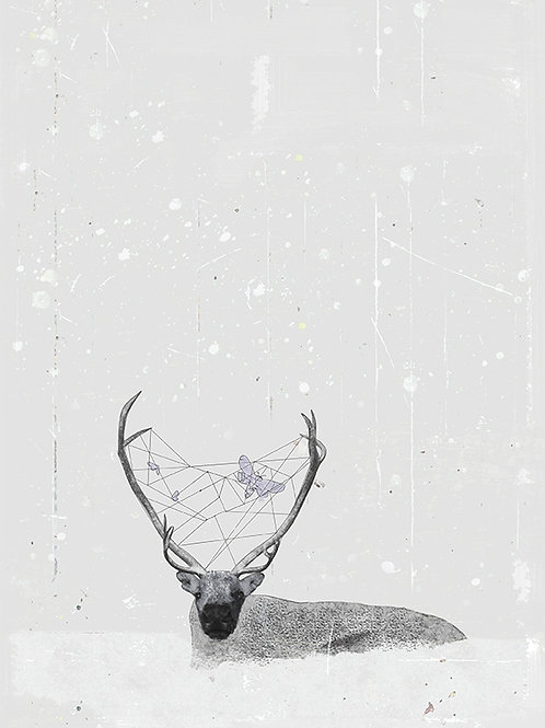 """Grafika """"Renifer w śniegu"""", A4"""
