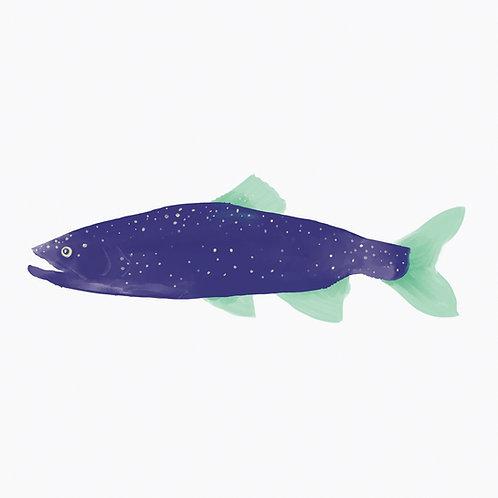 "Ekologiczna tapeta flizelinowa ""Pastel fish"""