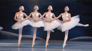 This Swan Lake is a magical treat