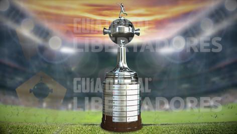 Animación 360 Copa Libertadores