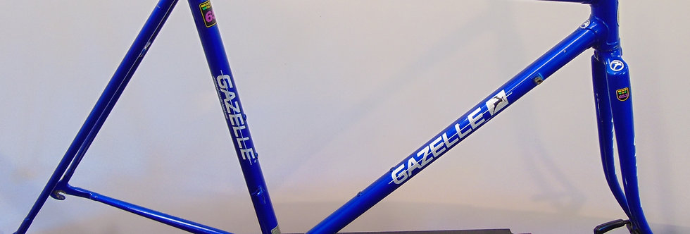 Gazelle Champion Mondial AA 653 Frameset 50cm Steel Reynolds 653