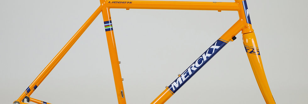 New Merckx Liege 75 Steel Columbus Frame & Carbon Forks 52cm (XS) NEW in Box