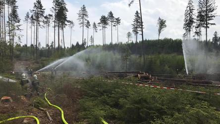 Waldbrandübung Gebharts 2019