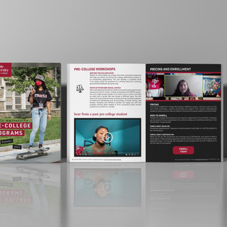 2021 Pre-College Digital Brochure