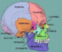 craniosacral columbia sc
