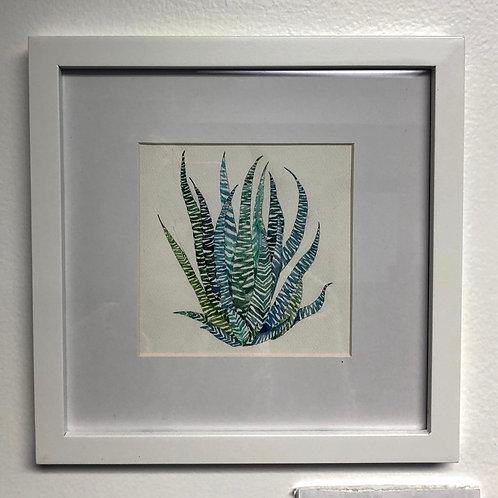 Zebra Plant Watercolor Painting