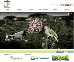 pedromascarin.com.br