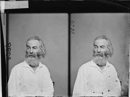 Love, Art, and Mayhem: Walt Whitman's Journey from Long Island Poet to War Hospital Observer