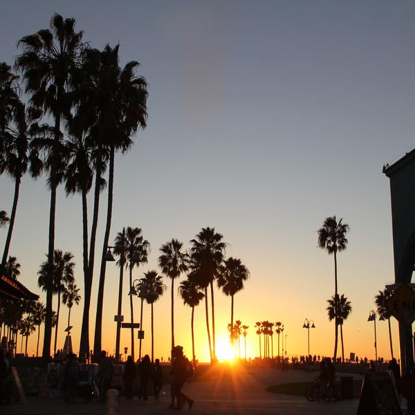 My Backyard, Venice Beach