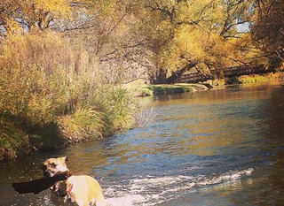 "The Poudre :: ""Why We Love Fort Collins"""