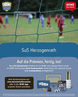 SfV - Tornetz.jpg