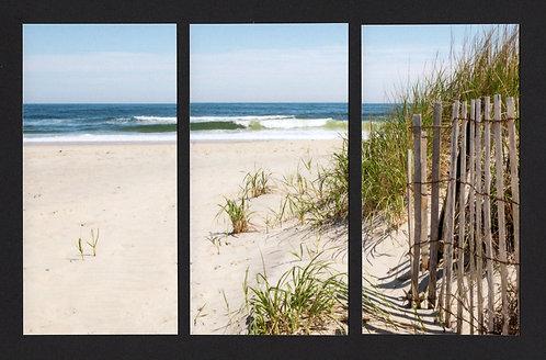 WT3 Reeds Triptych
