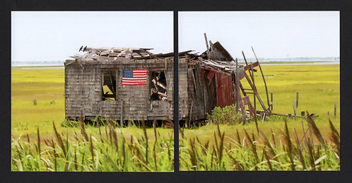 WD50 The Shack Diptych