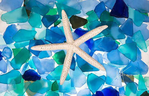 W44F Sea Glass Sea Star