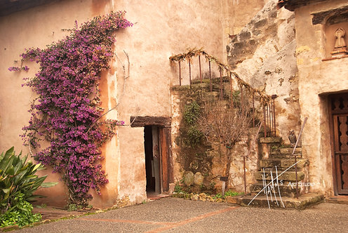 W61F Carmel Mission Door