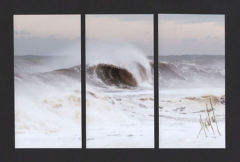 WT52 Barrel Wave Triptych