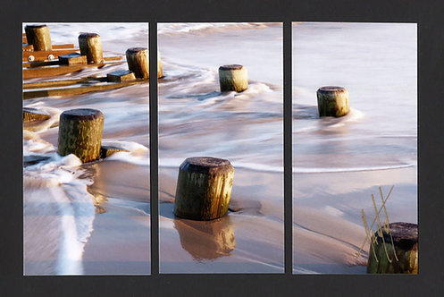 WT53 Surf Pilings Triptych