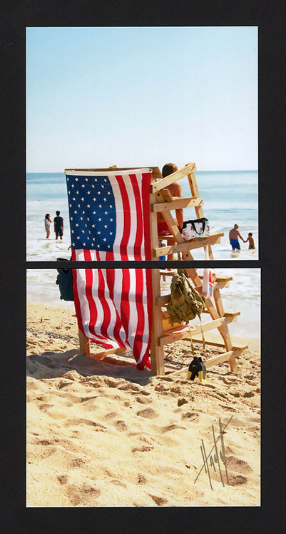 WD59 Vertical Flag and Stand Diptych