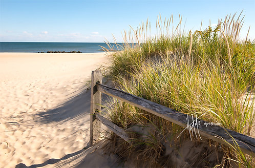 W21F Fence Dune