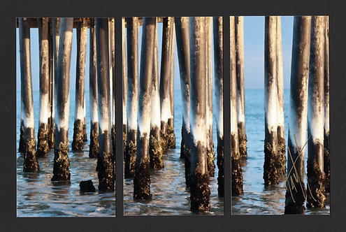 WT68 Ice Pilings Triptych