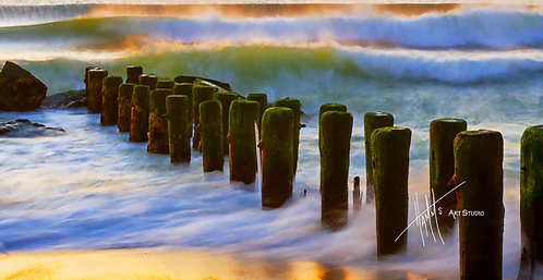 W2P Shorescape 3