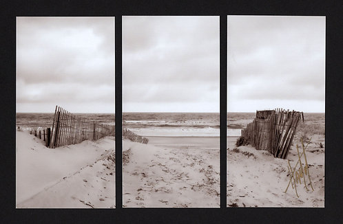 WT20 Beach Entrance Sepia Triptych