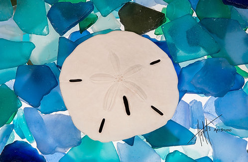 W45F Sea Glass Sand Dollar