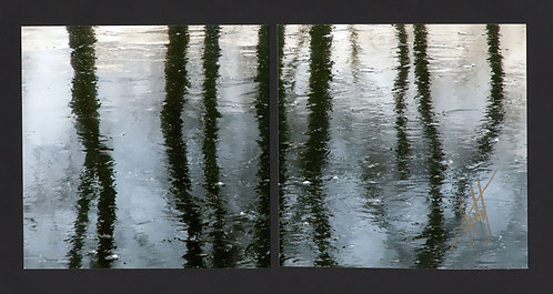 WD67 Shades of Light Diptych