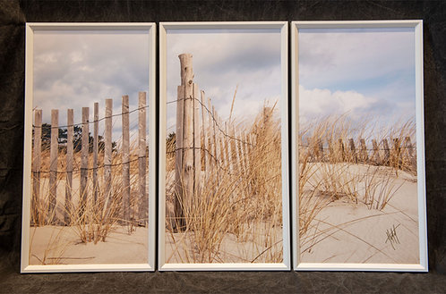 WT10 Fence Clouds Triptych