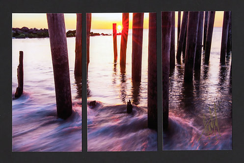 WT66 Morning Pilings Triptych