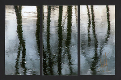 WT67 Shades of Light Triptych
