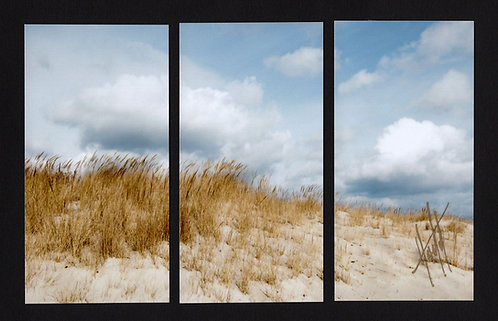WT9 Dune Clouds Triptych