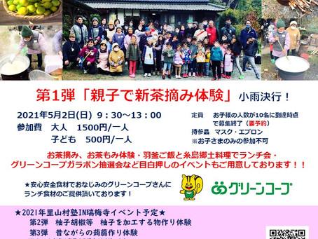 5月2日は瑞梅寺へGO!! 大自然の中で新茶摘み体験、開催します~(^^♪