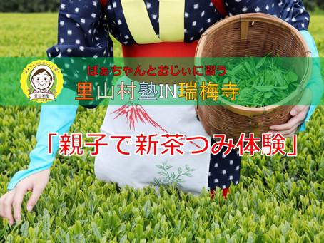 【親子新茶摘み体験♬ 参加申込み開始します!!】