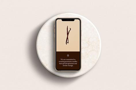Tio Home Wix Website Design.png