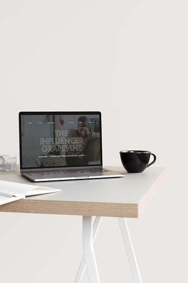 The Influencer Grapevine Wix Website Design