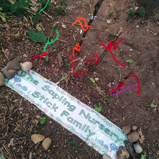 The Saplings Nursery Stick Family