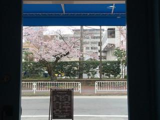 花見ができる美容室
