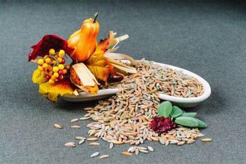 Papparedelle's Autumn Harvest Orzo