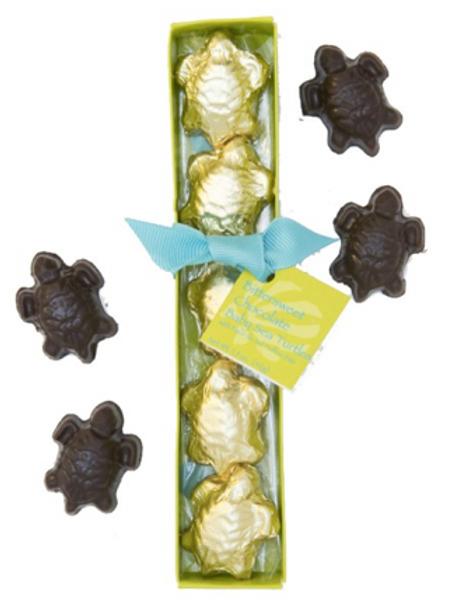 Sugar Marsh Baby Turtle Chocolates