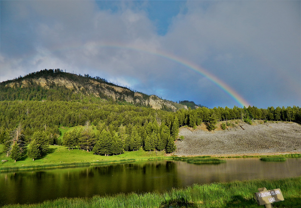 Floating Island Lake in Yellowstone National Park