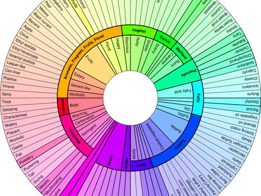 Beer Flavour Wheel