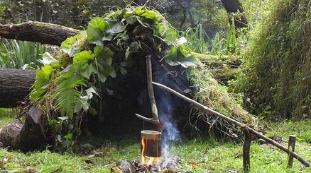 jungle-survival-ft-image-750x420.jpg